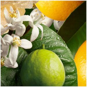 Molton Brown Orange and Bergamot Eau de Toilette 50ml: Image 7