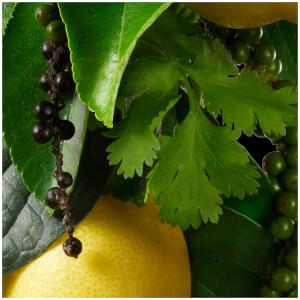 Molton Brown Black Peppercorn Aroma Reeds 150ml: Image 7