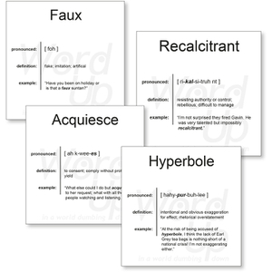 Word Up Vocabulary Flashcards Set