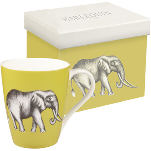 Harlequin Savanna Aspen Mug Gift Box - Gooseberry
