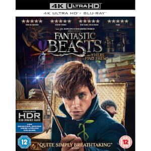 Les Animaux Fantastiques 4K Ultra HD