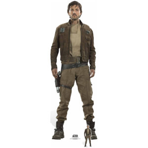 Silhouette Découpée en Carton - Star Wars: Rogue One Captain Cassian Andor (Diego Luna)