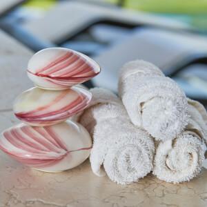 Massage Therapies - Hot Lava Shell Abdomen Treatment