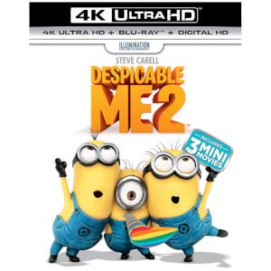 Despicable Me 2 - 4K Ultra HD (Includes UV Copy)