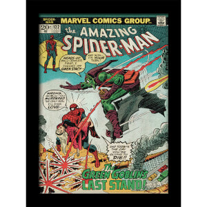 Affiche Marvel Comics Spider-Man Vs. Green Goblin 30 x 40cm -Gel Coat