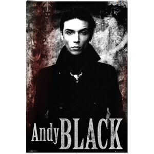 Andy Black Stone - 61 x 91.5cm Maxi Poster
