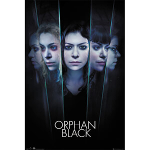 Orphan Black Faces - 61 x 91.5cm Maxi Poster
