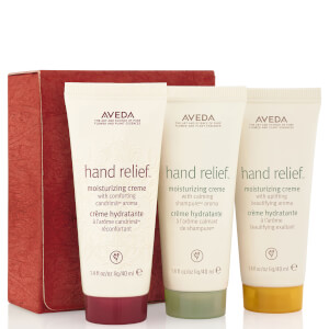 Aveda Renewal for Your Journey Gift Set