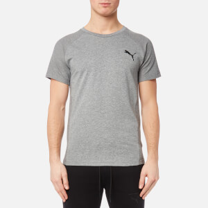 Puma Men's Evostripe Move Short Sleeve T-Shirt - Medium Grey Heather