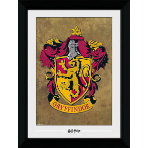 Harry Potter Gryffindor Collector's 50 x 70cm Framed Photograph