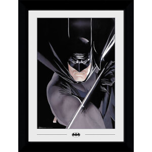 DC Comics Batman Ross Collector 50 x 70cm Framed Photograph