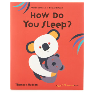 Thames and Hudson Ltd: How Do You Sleep?
