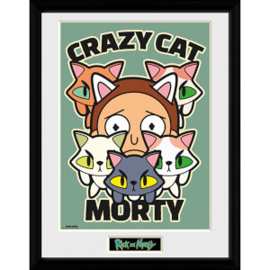 Rick and Morty Crazy Cat Morty 12 x 16 Inches Framed Photograph