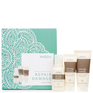 Aveda Damage Discovery Set