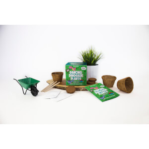 Tanzende Dinosaurier-Pflanzen Set zum Selberzüchten