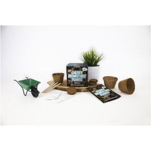 Sow & Grow Cheeky Monkey Nut Plants