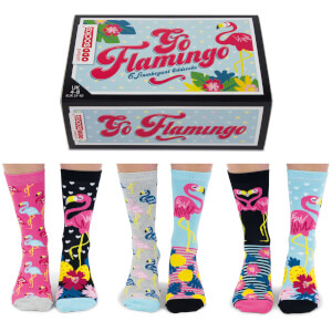 United Oddsocks Womens Go Flamingo Socks Gift Set