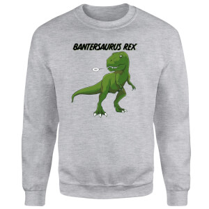 Bantersaurus Rex Sweatshirt - Grey