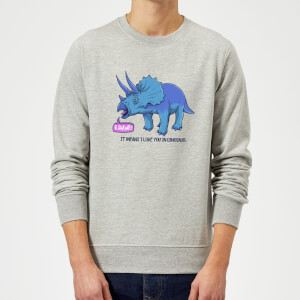Rawr It Means I Love You Sweatshirt - Grey