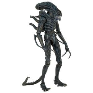 NECA Aliens 1/4 Scale Figure Warrior 1986 Version