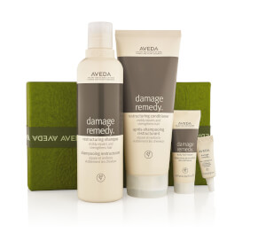 Aveda Damage Remedy Set