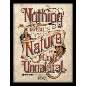 Fantastic Beasts (Nature) Framed 30 x 40cm Print