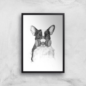 Balazs Solti Masked Bulldog Art Print