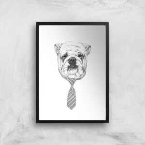 Balazs Solti Suited and Booted Bulldog Art Print