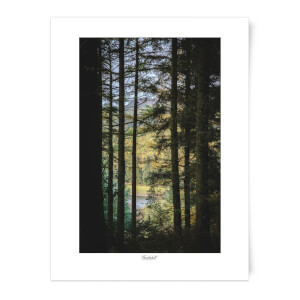 Macclesfield Forest Art Print