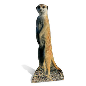 Meerkat Lifesize Cardboard Cut Out