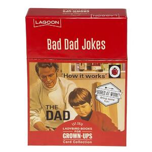 Ladybird Books For Grown-Ups Bad Dad Jokes