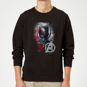 Sweat-shirt Avengers Endgame Ant Man Brushed - Homme - Noir