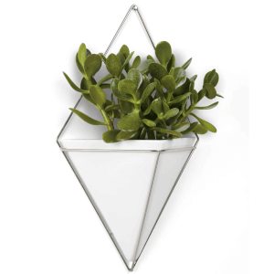 Umbra Trigg Wall Vessel - Large - White Nickel