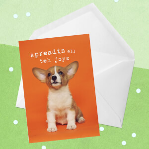 Spreadin All Teh Joyz Greetings Card