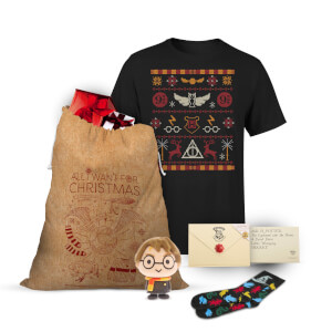 Harry Potter Officially Licensed Christmas Bundle
