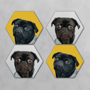 Pugs Hexagonal Coaster Set