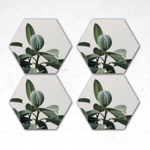 Green Plant Photograph Hexagonal Coaster Set