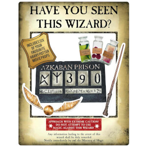 Harry Potter Gold Wanted Selfie Frame Poster with Props