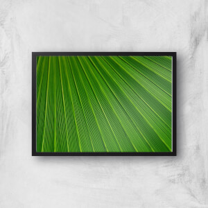 Green Sheet Giclee Art Print