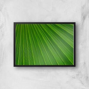 Green Sheet Giclee Art Print