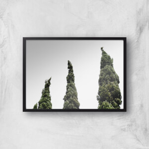 Wonky Trees Giclee Art Print