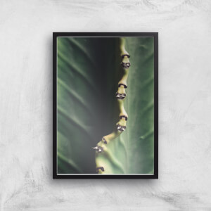 Leaf Close Up Giclee Art Print