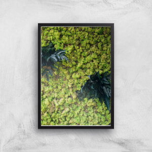 Green Forest From Above Giclee Art Print