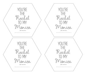 Friends You're The Rachel To My Monica Hexagonal Coaster Set