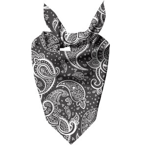 Inverted Paisley Dog Bandana