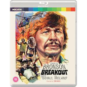 Breakout (Standard Edition)