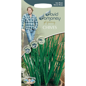 DD Chives Seeds