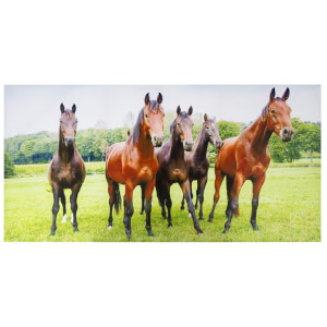 Interested Horses Outdoor Canvas 70x140cm