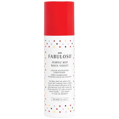 Evo Fabuloso Colour Intensifying Conditioner Purple Red (250ml)