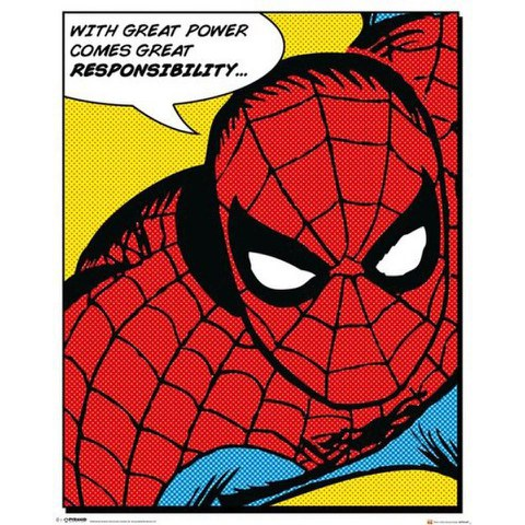 Marvel Spider-Man Quote - 16 x 20 Inches Mini Poster